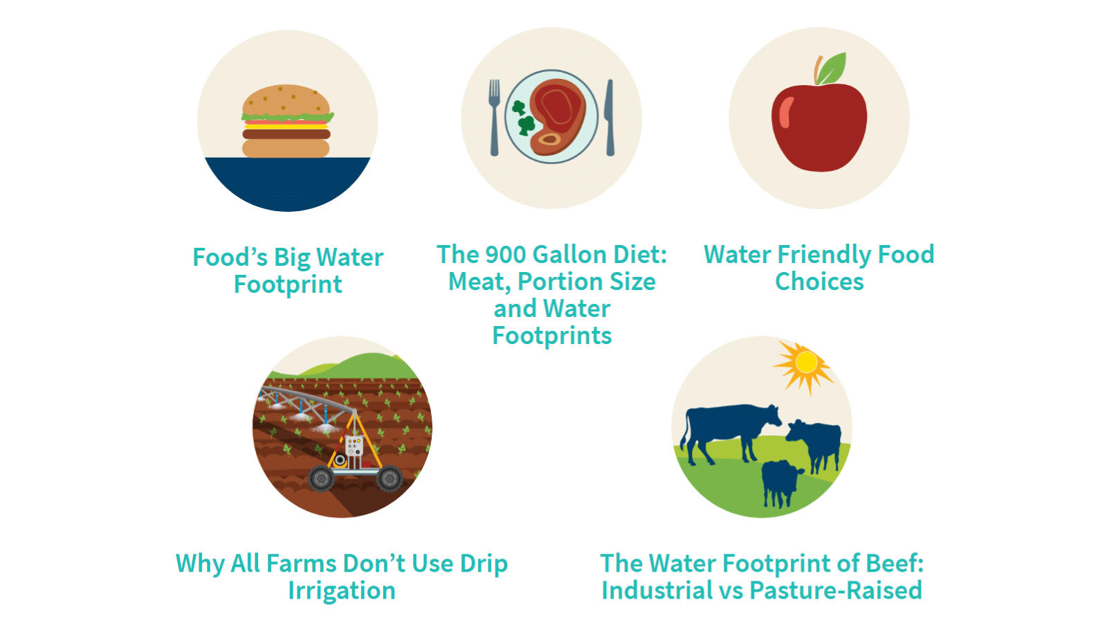 Five facts from watercalculator.org